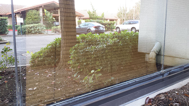 Picture of window after commercial window cleaning in Irvine by Blue Coast Window Cleaning Service.