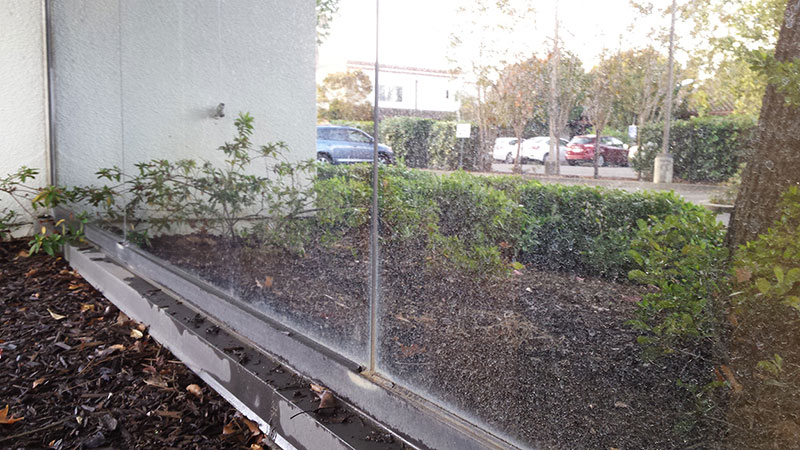 Picture of window before commercial window cleaning in Irvine by Blue Coast Window Cleaning Service.